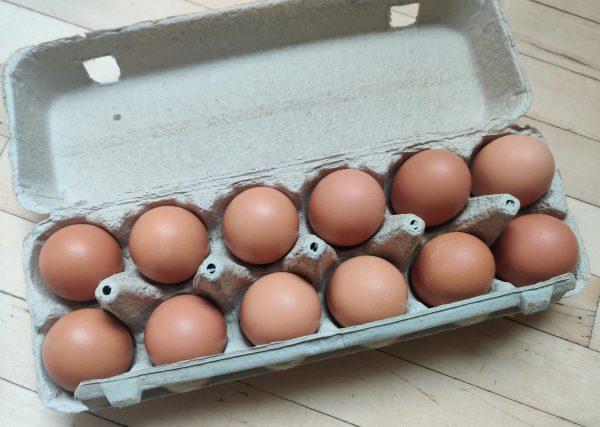 Organic Yukon eggs in a carton local food